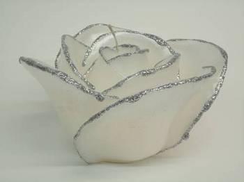 Τριαντάφυλλο λευκό-ασημί medium