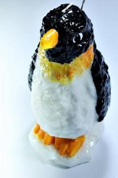 Πιγκουίνος σπυρωτός 20*8*10