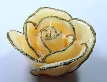 Τριαντάφυλλο Ιβουάρ Χρυσό Medium