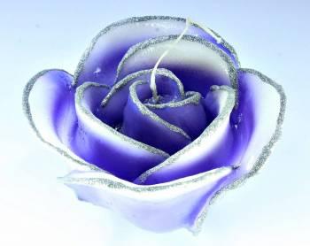 Τριαντάφυλλο  μώβ- ασημί medium