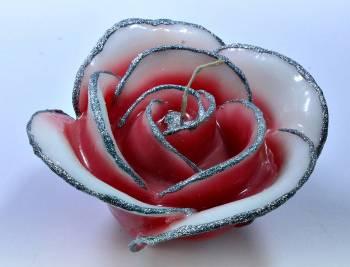 Τριαντάφυλλο κόκκινο- ασημί medium