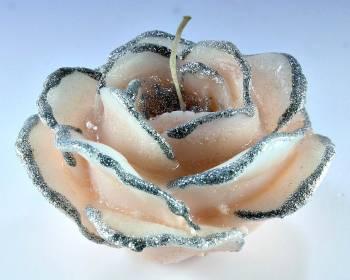 Τριαντάφυλλο σομόν- ασημί 5*9 μίνι1
