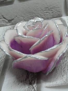 Τριαντάφυλλο διπλό λιλά